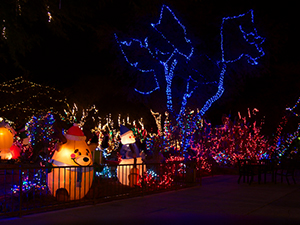 Christmas Lighting Houston